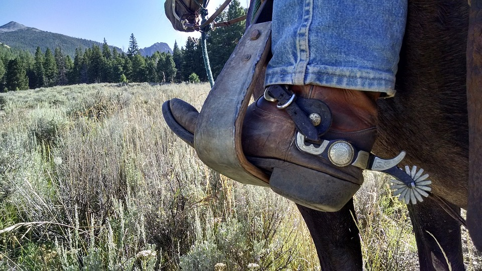 cowboy-2243027_960_72011